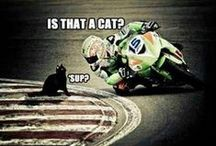 Motorcycle Humour / Funny Motorcycle Pictures #Motorcycles