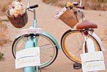 bikes and baskets / by Regina DeGrenier