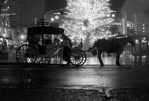 Carriages / by Regina DeGrenier