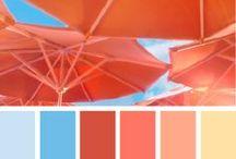 Colorful--Palettes / by Celeste M.