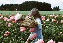 Beautiful Things / by Lauren Johnson