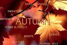 Fall Fun / Things to do and places to go in the Fall  my favorite season / by Marie Lough