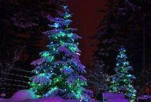 Christmas Magic / splendor of the holidays / by Marie Lough