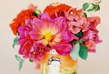 wedding style: fiesta! / by Michaela | Hey Look