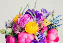 wedding style: fun & colorful / by Michaela | Hey Look