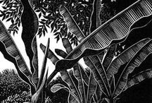 Lino/Scratch/Woodblock / by Mattie Weiss