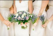 Wedding Flowers / Wedding Photography by Vanessa Adams www.vanessaadams.com