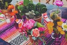 Fiesta | Mexican Inspired Party / fiesta theme party
