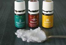 living forever with young living essential oils / health and wellness.