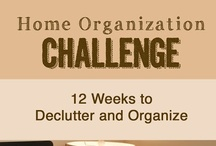 Organizing and Storage / Great ideas on how to organize your home or creative space.