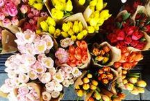 Horchow Now: Flower Power