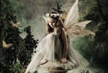 Fairies / by Elicia Williams