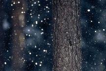 Neve, encantadora neve