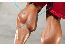 Leg Exercise & Workouts