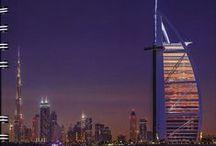 UAE - United Arab Emirates/ دولة الإمارات العربية المتحدة / The Collection has more than 190 publications about United Arab Emirates.