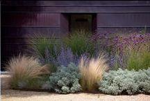 Yard & outdoors