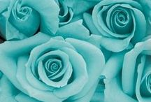 TURQUOISE ....and other shades of Blue