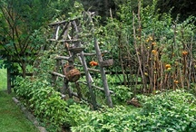 Gardening / All things gardening! Growing vegetables, herbs, fruits, and flowers. Tutorials, inspiration and lots of ideas! / by Linn Acres Farm (Megan J)