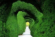 Beautiful gardens...