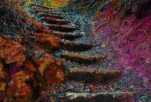 Doors, Passageways and Stairways 2 / by Gloria Z Longoria
