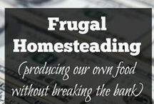 Frugal Living / How to live frugally and save money where you can!