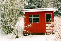 Chicken Coops / Need some inspiration to design & build the perfect chicken coop? Here's a ton of ideas for you to get started with keeping chickens!