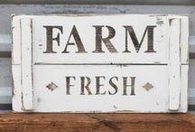 Farm Decor / Decoration for around the farm! Coop & barn signs and yard decor.