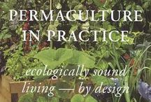 Permaculture / Everything permaculture related.