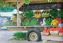 Farm Store Ideas / Ideas for starting, organizing and setting up a farm stand.