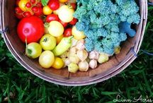 Best of Linn Acres Farm / Everything from our blog, Linn Acres Farm. Homesteading, gardening, chicken keeping, recipes, DIY projects, and inspiration to help you live a happier & healthier life.