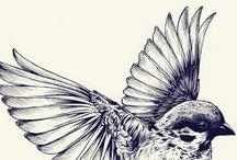 PIGE [Web / Print design / Artwork] / by Eric Loreal