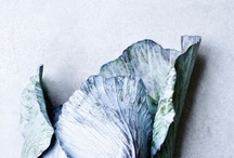 The Eats / visual deliciousness / by Sian Binder