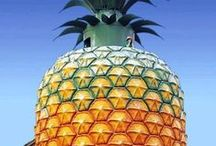 Pineapple Magic / Pineappley!