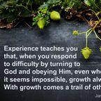 Things I've Learned