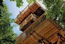 Treehouse dream