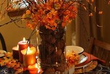 Thanksgiving / by Susan Phelan