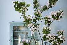Folkster <3 Garden & Floral