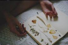 Autumn / by Adrianna Keczmerska