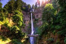Portland Adventure / by Meghan Holmes