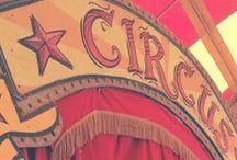 Circus Mini Sessions