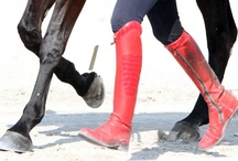Equestrian Style / by K
