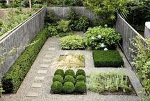 gardens + green thumbs