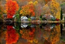 Autumn, My Favorite Season / anything for autumn