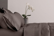 Bedding  / Bed room sets and bedding for a luxurious sleep experience.