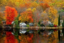 Can't wait for FALL!!