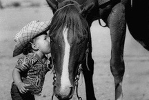 Horse Crazy From Birth / Ever since I can remember I have loved horses.  I was lucky enough to have horses when I was younger.  When I lived near Sun Valley, I worked at an Arabian race horse ranch, halter breaking and training the babies.  That was a fun job which I did, not for the money but for the love of horses.  I still love horses but I have no real desire to own one right now.  Maybe I'll have another horse someday but now, I am collecting some of the most beautiful animals God ever created, here on my board.