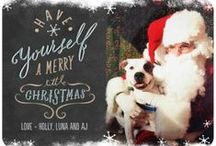 Happy Howlidays / Spreading the seasonal cheer with festive best friends and holiday pet health tips and topics from around the web