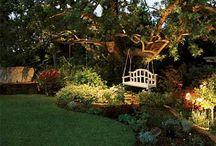Garden/Landscaping / by Lauren Hernandez