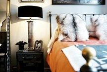 BEDROOM / Your bedroom is where you spend most of your time, ppl...ready to get turnt up? Here are some of the most inspiring bedroom design ideas. No Ambien required. Tufted headboard. Boho bedroom inspiration. Modern farmhouse bedroom. Beautiful bedding. Bedroom styling. Cozy bedroom inspiration. Adding texture to your bedding. Pillow inspiration for your bedroom.