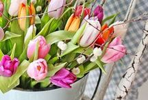 Seasonal: Spring